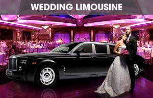 Long Island Wedding Limo and Party Bus Service