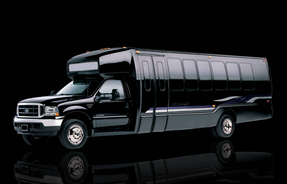 29 Passenger Party Bus Rental In Long Island New York