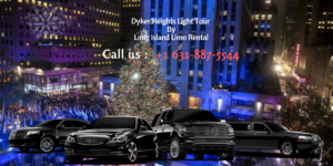 Dyker Heights Brooklyn Limo Party Bus
