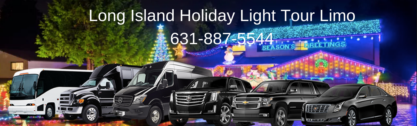 Long Island Christmas Light tour Limo